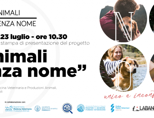 Animali senza nome, il 23 luglio la presentazione al Dipartimento di Medicina Veterinaria e Produzioni Animali di Napoli
